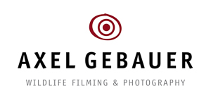 Axel Gebauer Wildlife Filming & Photography