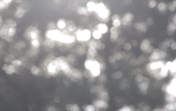 LichtReflexe