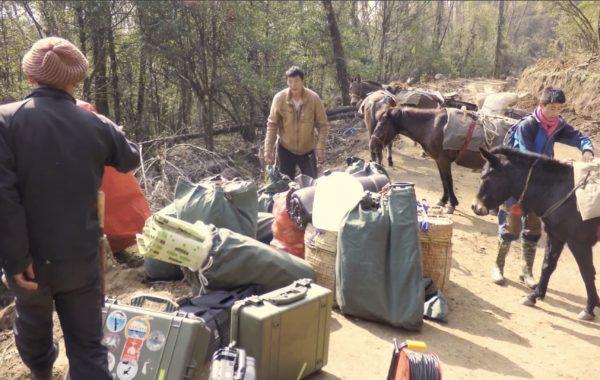 Pelibox crash Bhutan